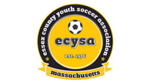 ecysa_logo_color.png